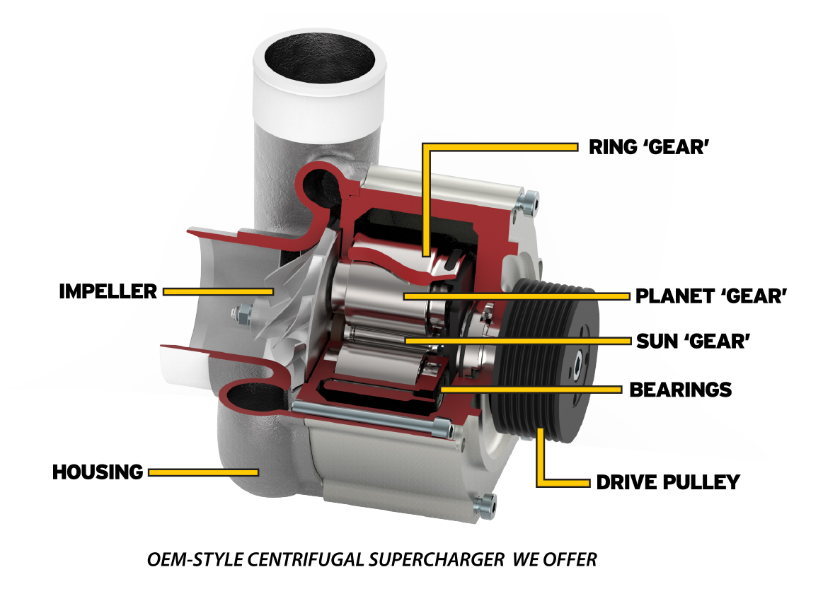 OEM Style Supercharger Cutaway